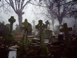 Misty-Graveyard