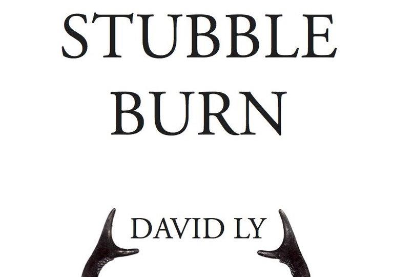 stubble burn david ly